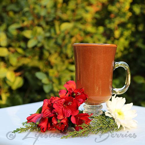 Vegan Cherry Hot Choclate! Sugar Free! www.LipstickandBerries.com