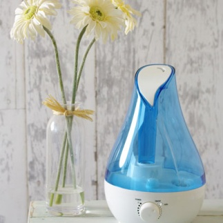 blue-rose-humidifier-2L