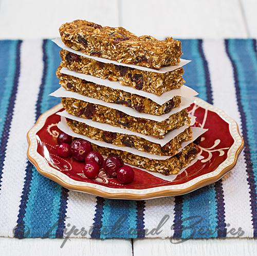 Cranberry-Granola-BarWEB2